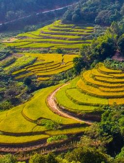 浦北马江源头有一个座长寿村,那里美的不仅