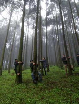 浦北六万山摩旅2——绕行钦州最高峰去看杜