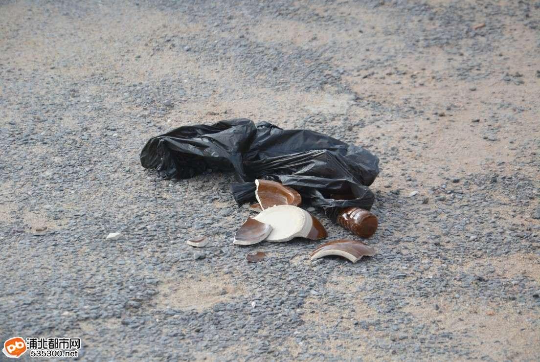 车祸动物受伤图片大全