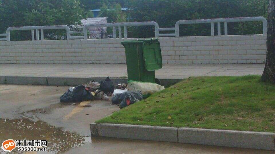 文昌公园垃圾满街丢是垃圾桶小还是市民素质差