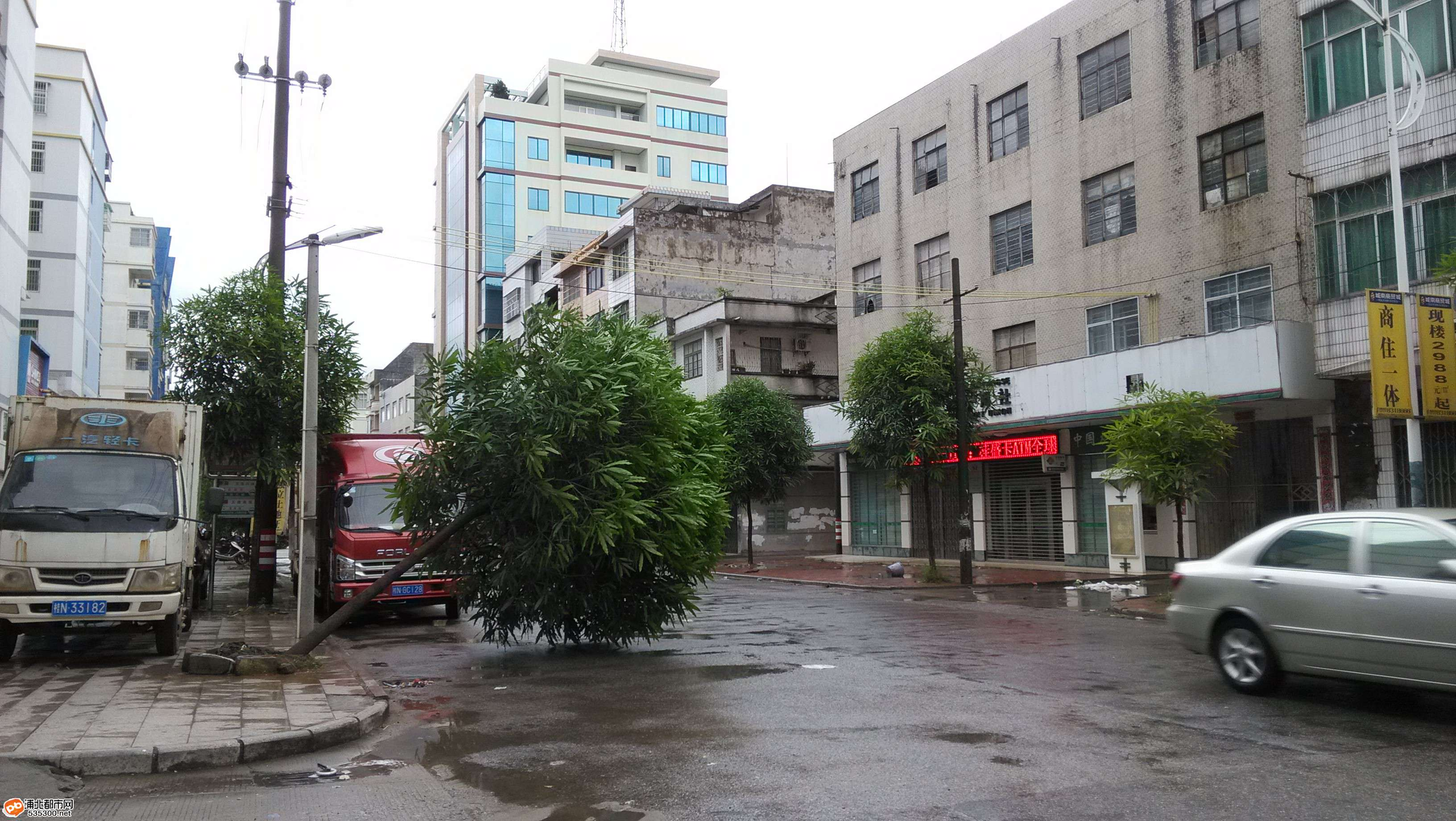 超强台风袭击浦北县城:树倒车翻好恐怖