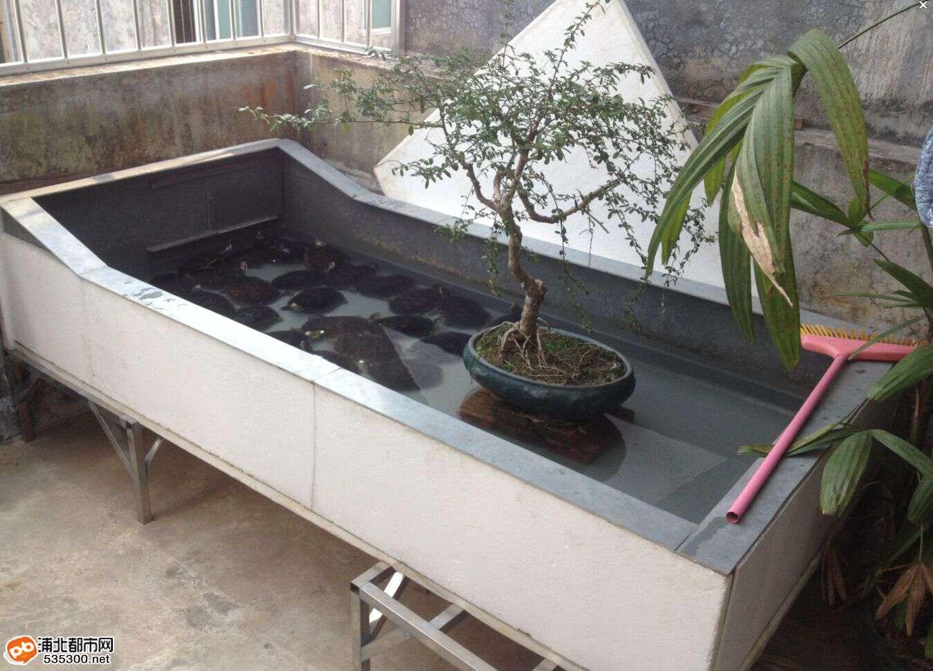 2014阳台龟池设计图_五彩雨花石鱼池,文化石鱼池,艺_设计分享