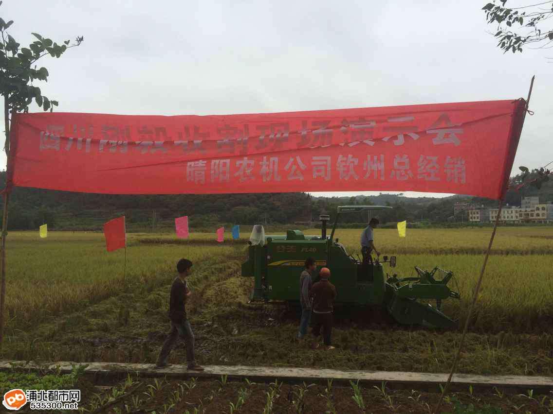 浦北县福旺镇水稻收割机械化现场展示