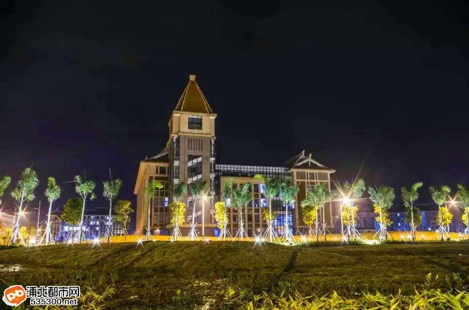 欽州艾利斯頓-北部灣大學校園璀璨夜景-網友爆料
