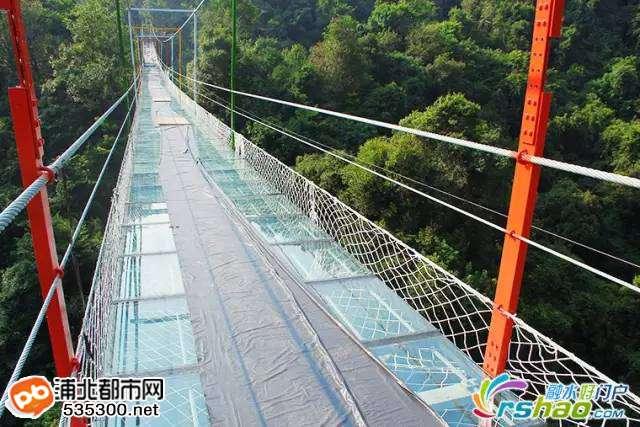 """这个玻璃桥栈道位于被称为广西小""""张家界""""的广西柳州市融水双龙沟景区"""