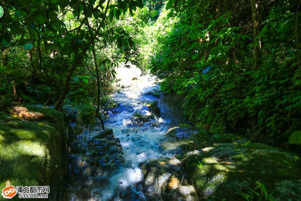 穿越五皇山原始森林峡谷,寻找土匪黄三爷生活过的石洞