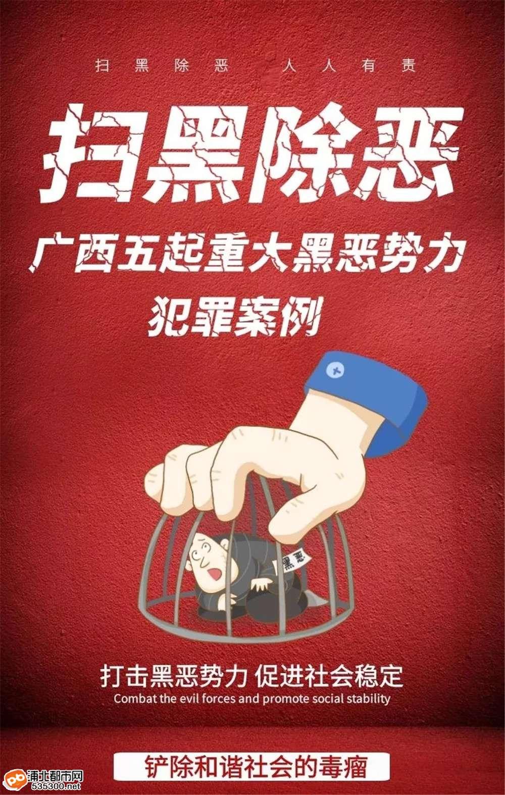 广西五起重大黑恶势力犯罪案例,浦北有2起