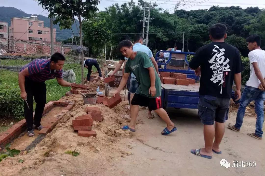 40多个年轻人从广东赶回浦北,只为干好这件事