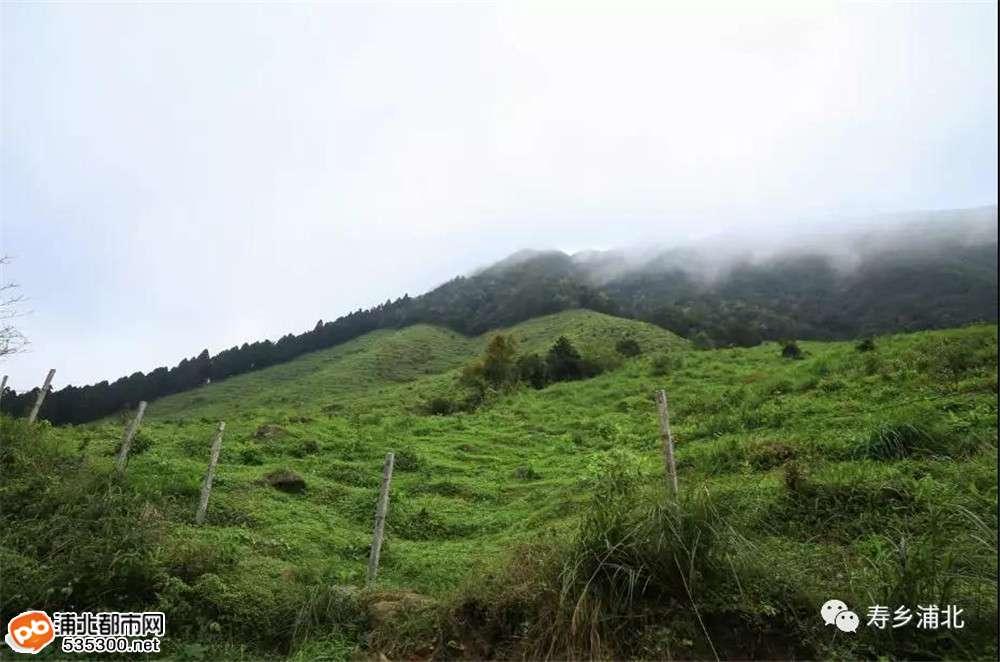 浦北六万山摩旅2――绕行钦州最高峰去看杜鹃花