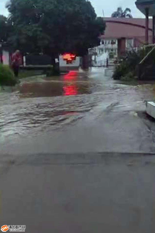 暴雨来袭!泉水街淹水,而泉水中学已变成了这样子……