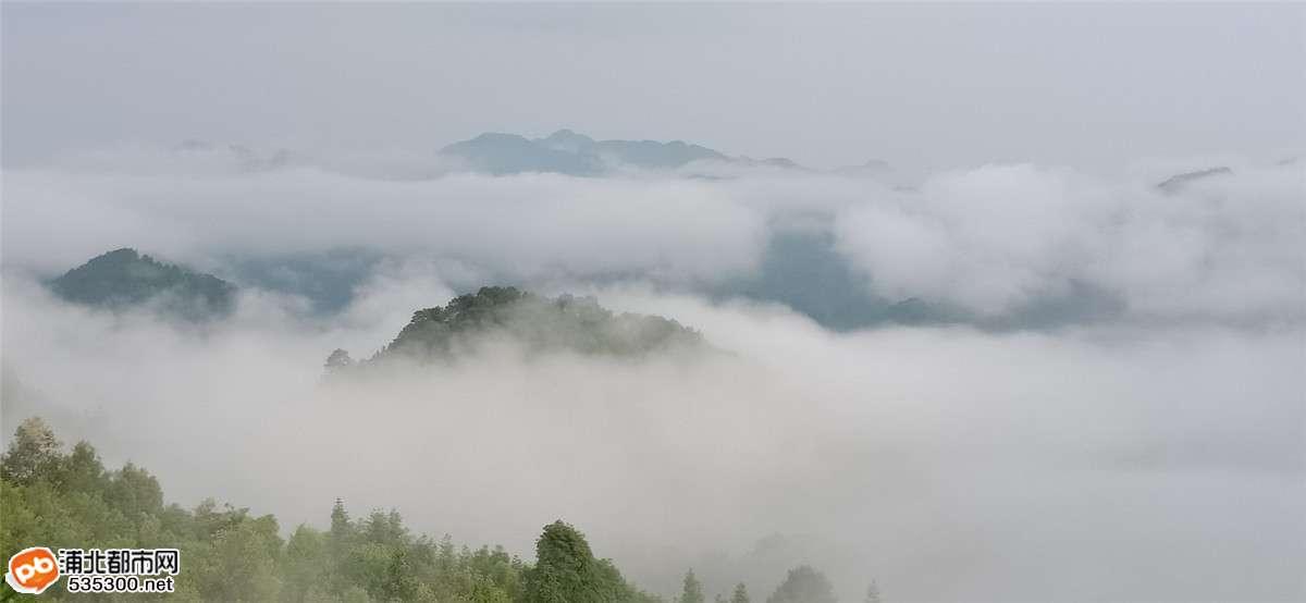 仙境?官垌大山此景只应天上有,人间哪得几回闻!