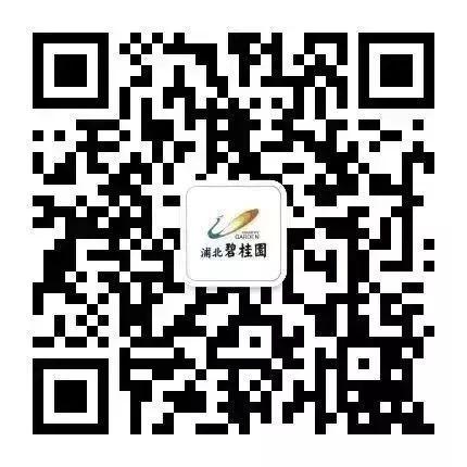 浦北碧桂园年终购房节|压轴钜惠 首付6万起