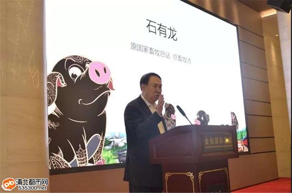 浦北黑猪 常吃长寿|浦北黑猪公用品牌发布会在南宁召开