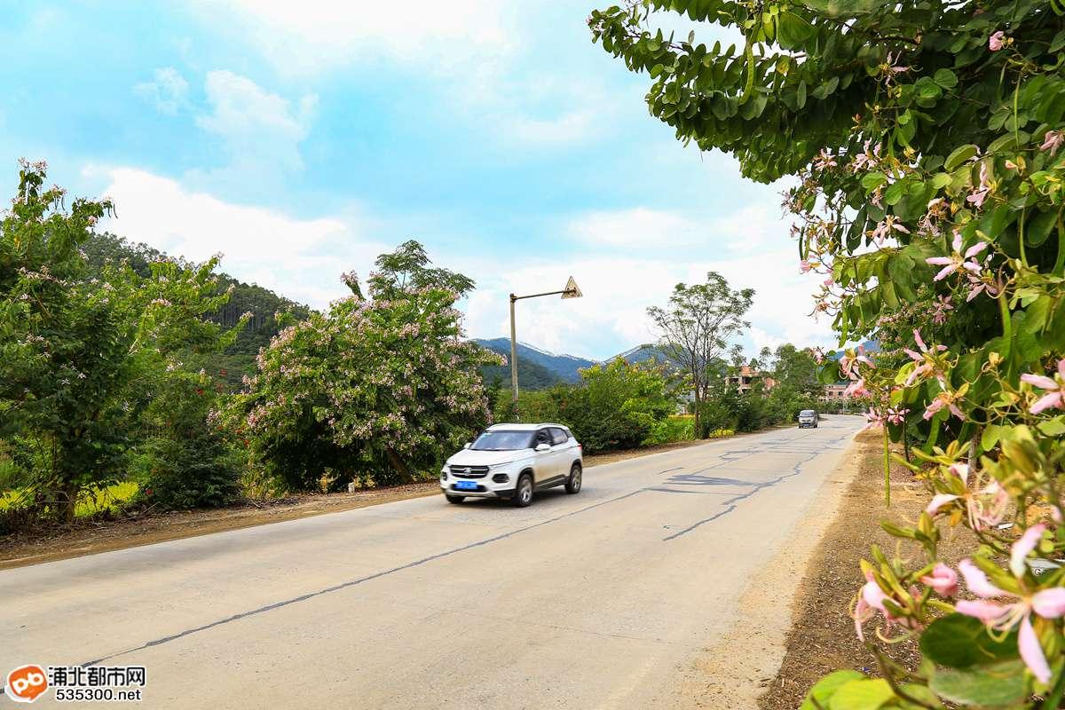 浦北又有大动作!浦灵二级路将扩建成一级路,四车道标准建设