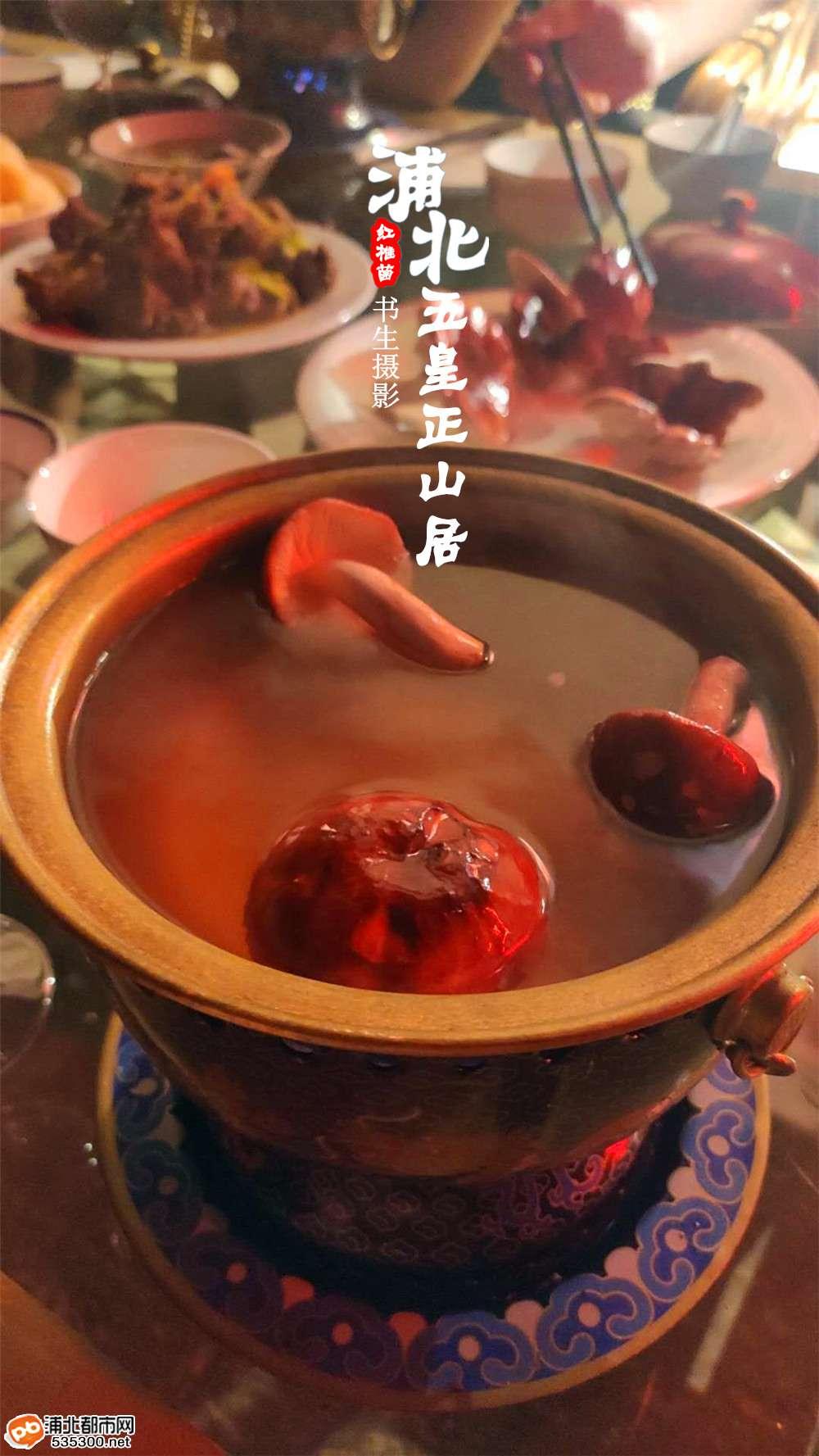浦北五皇正山居·微茶庄园尝野生红椎菌,过简单的慢生活