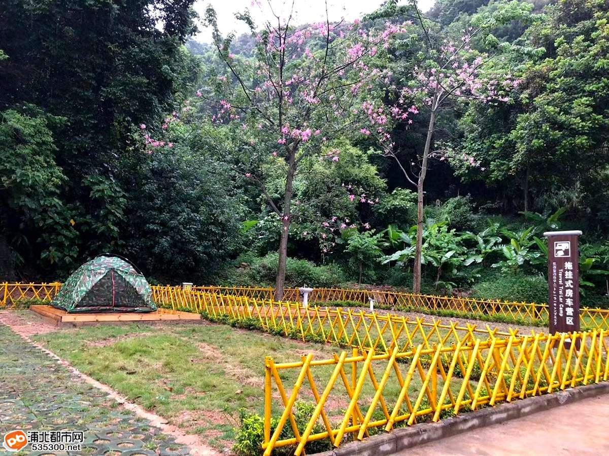 浦北新增一个户外露营汽车旅游营地,就在这,周末约吗?