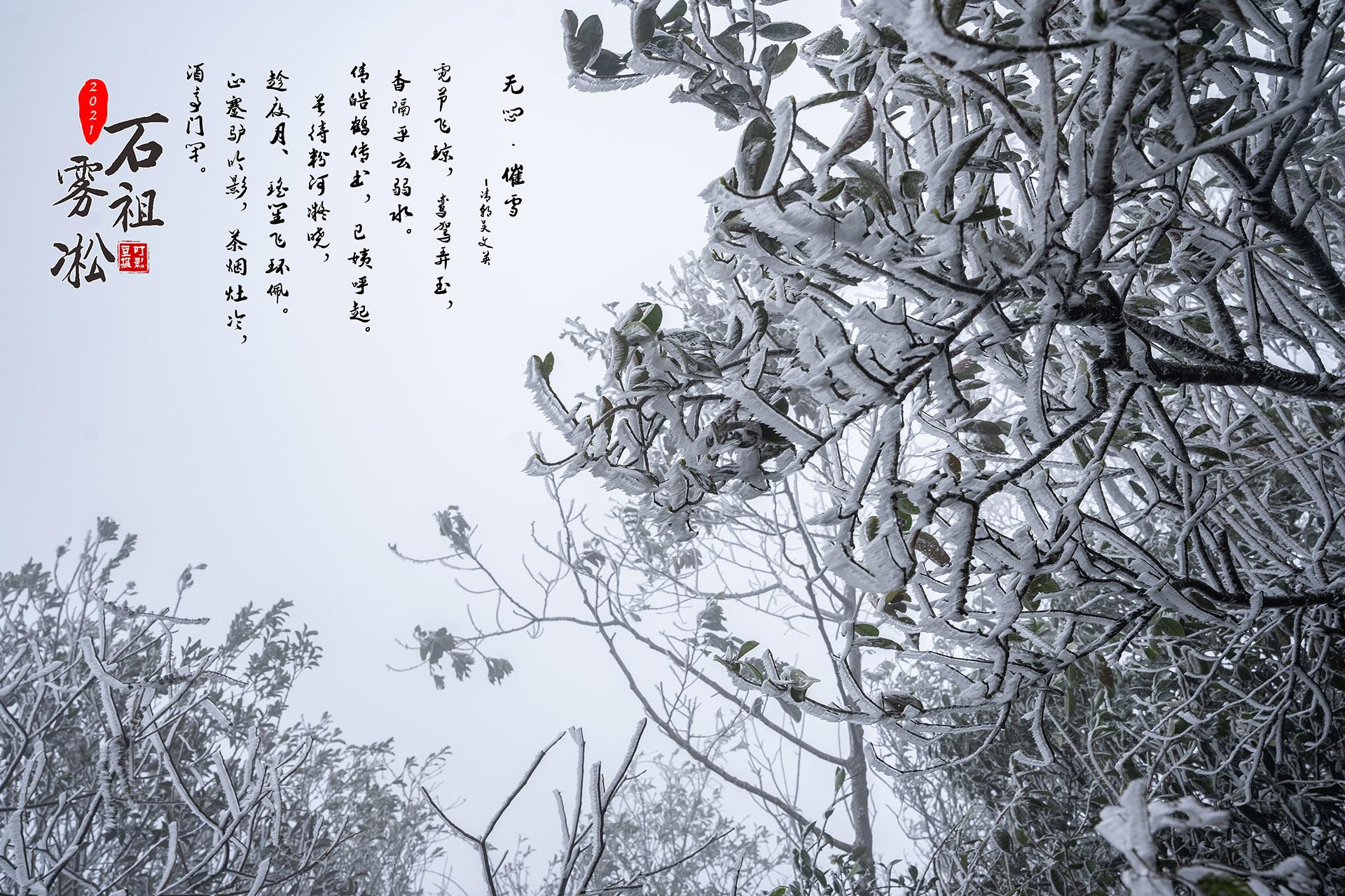 20210108石祖雾淞美景艺术3.jpg