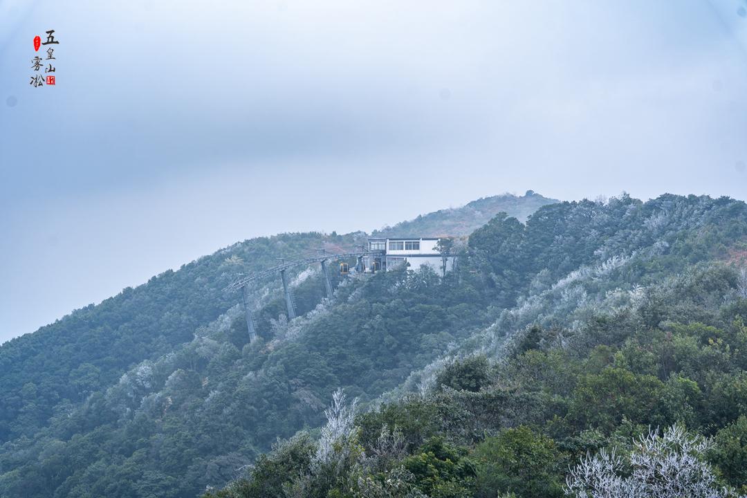 20210108五皇雾凇美景11.jpg