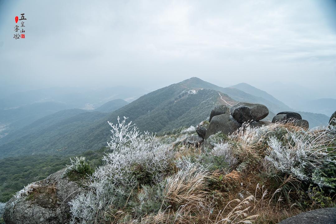 20210108五皇雾凇美景23.jpg