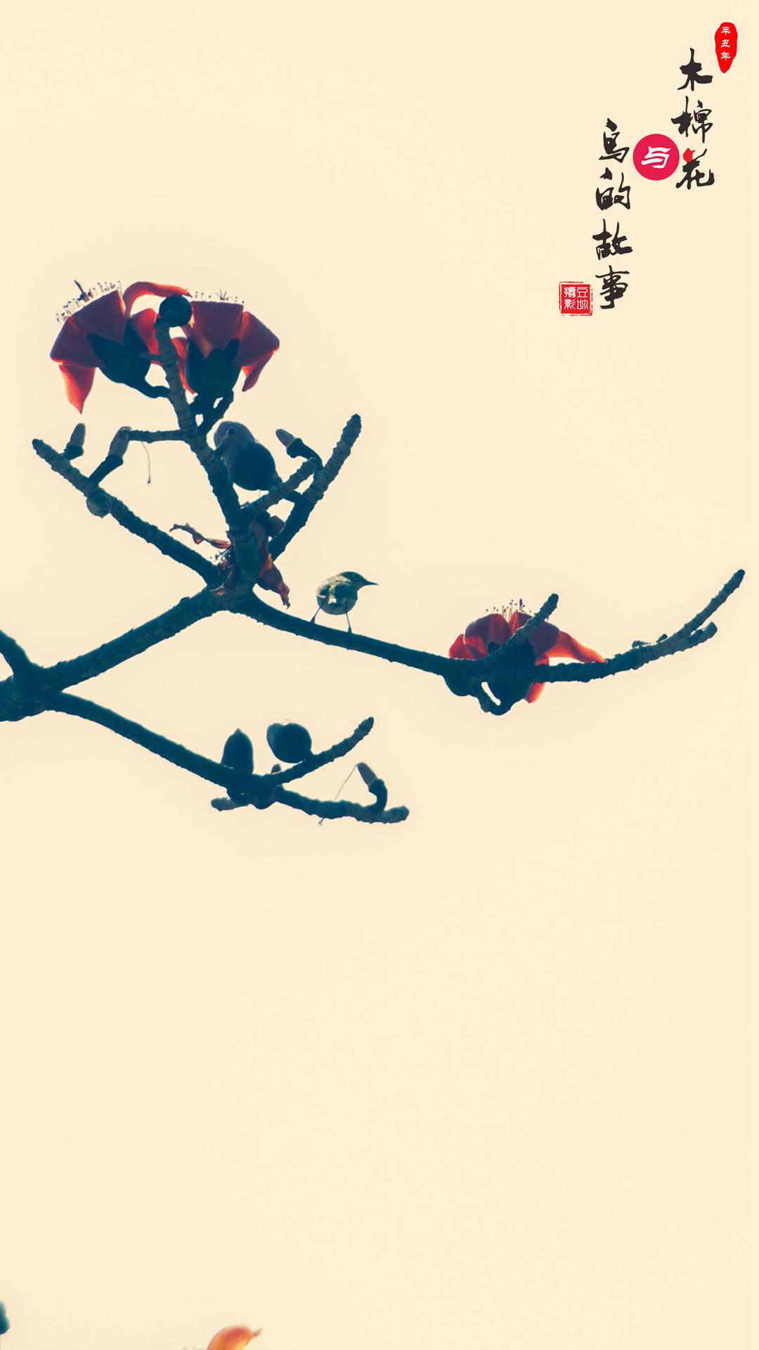 木棉花与鸟的故事02.jpg