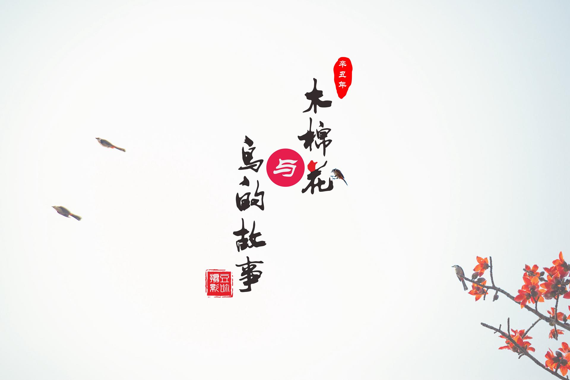 木棉花与鸟的故事01.jpg