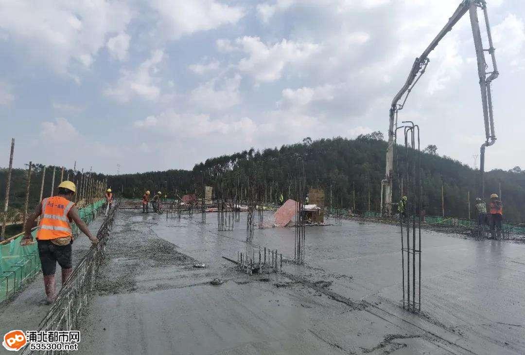 国庆施工不打烊,浦清高速项目建设不停歇